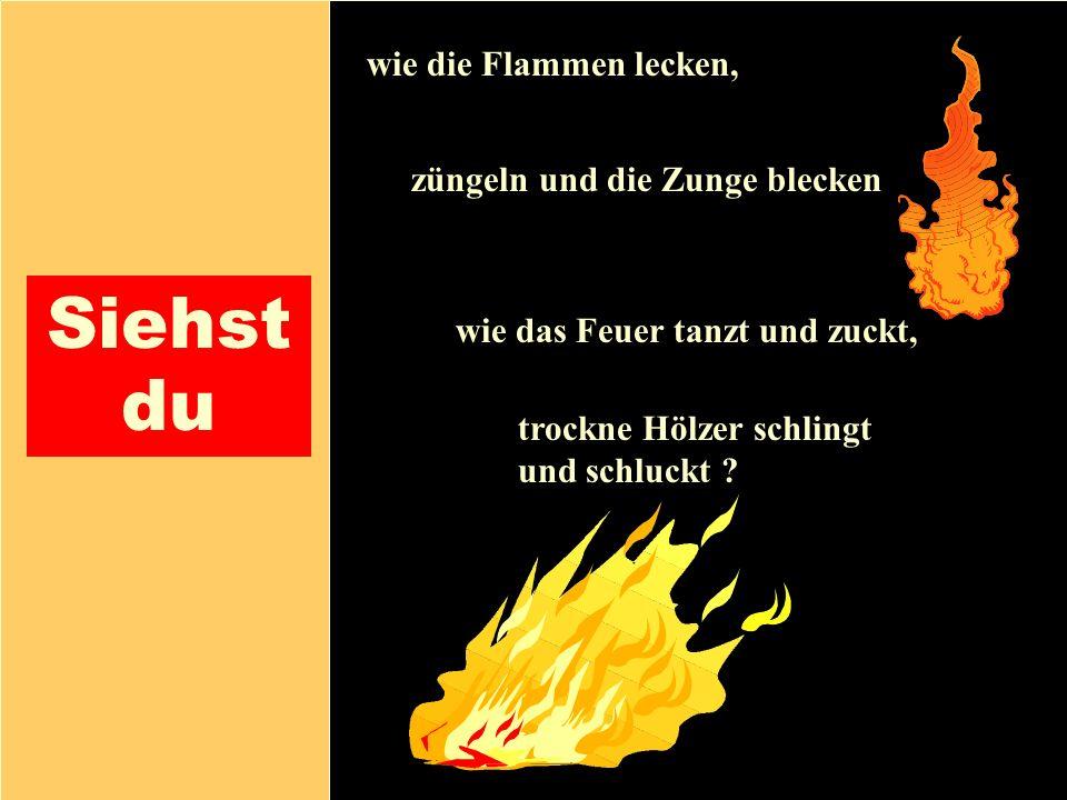 26.04.1999Gerald Kiefer13 Siehst du wie die Flammen lecken, züngeln und die Zunge blecken trockne Hölzer schlingt und schluckt ? wie das Feuer tanzt u