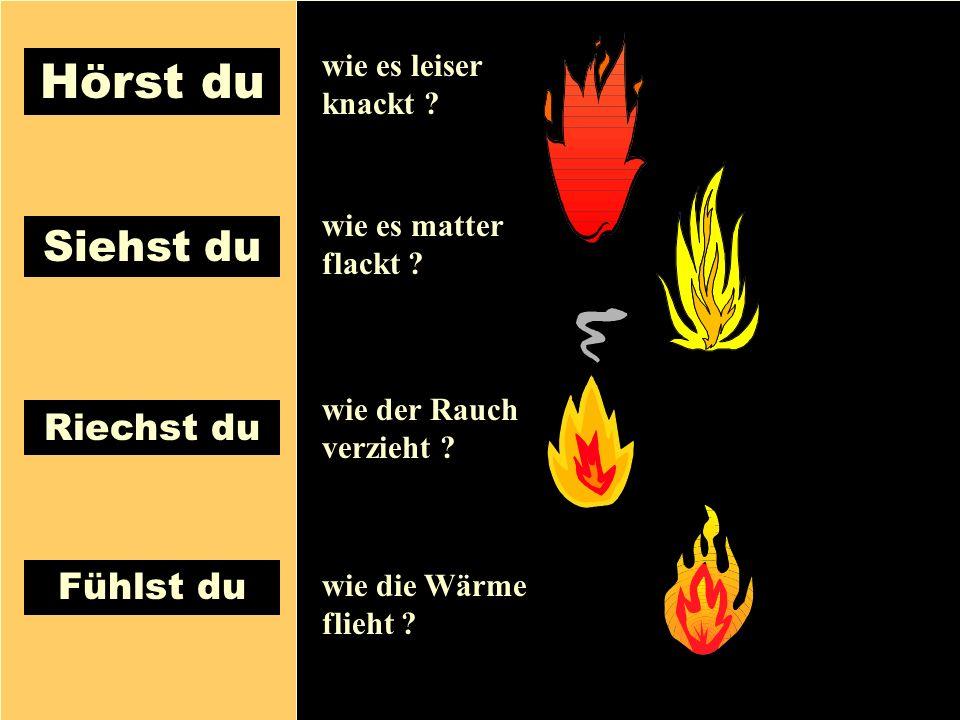 26.04.1999Gerald Kiefer16 Riechst du Siehst du Fühlst du Hörst du wie es leiser knackt ? wie es matter flackt ? wie der Rauch verzieht ? wie die Wärme