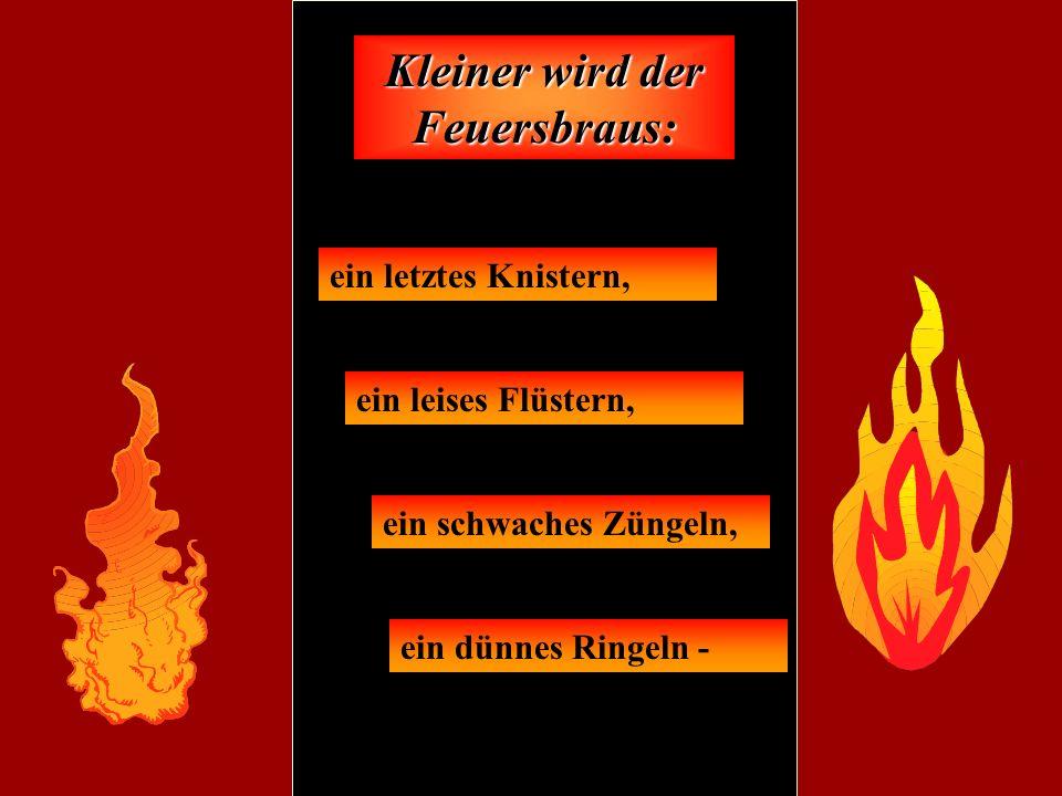 Kleiner wird der Feuersbraus: ein letztes Knistern, ein leises Flüstern, ein schwaches Züngeln, ein dünnes Ringeln -