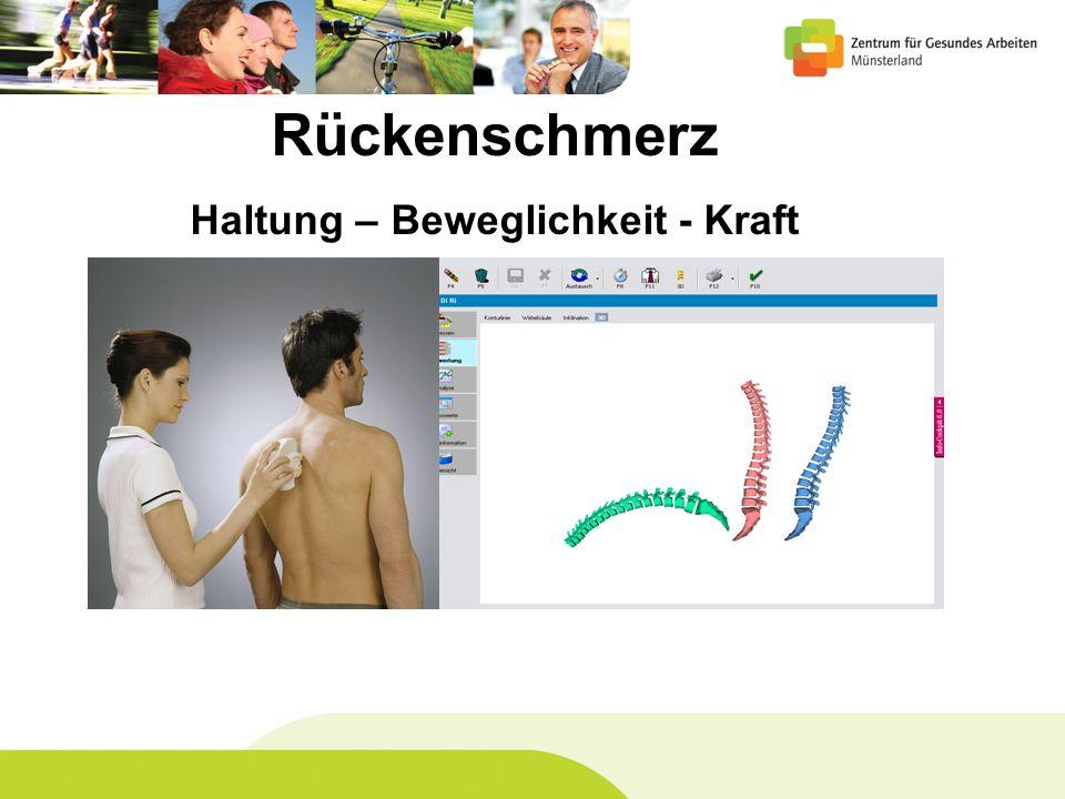 Rückenschmerz Haltung – Beweglichkeit - Kraft