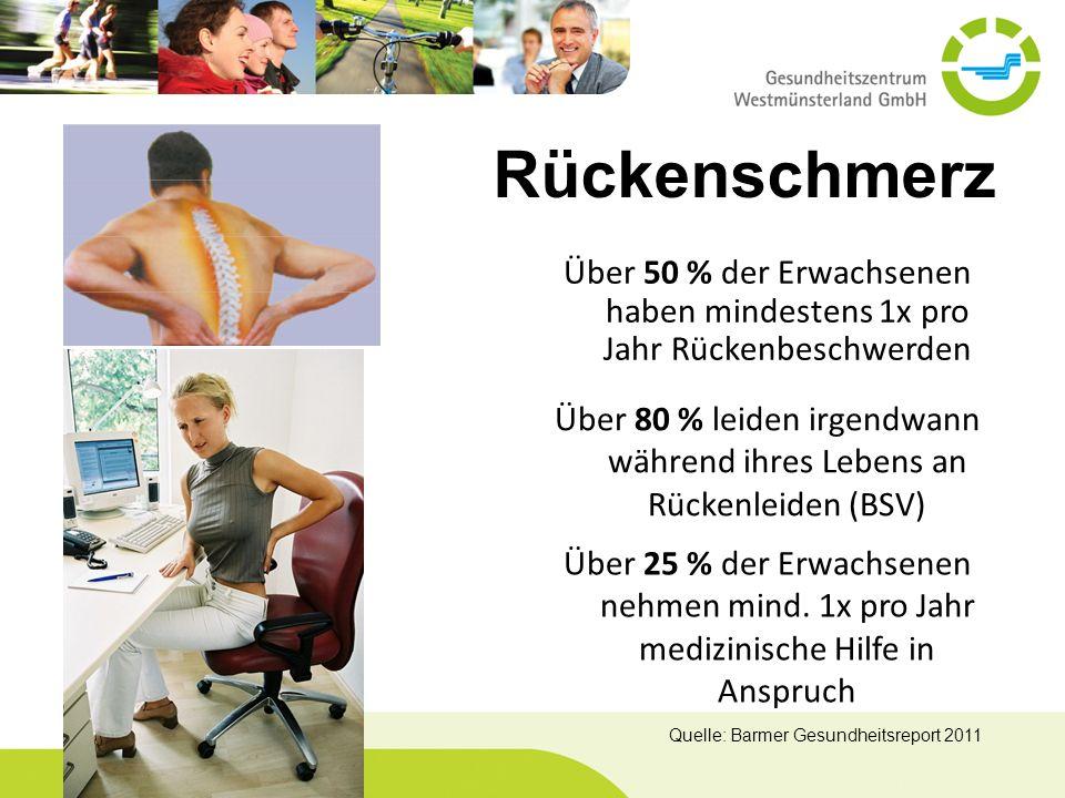 Über 50 % der Erwachsenen haben mindestens 1x pro Jahr Rückenbeschwerden Über 80 % leiden irgendwann während ihres Lebens an Rückenleiden (BSV) Über 2