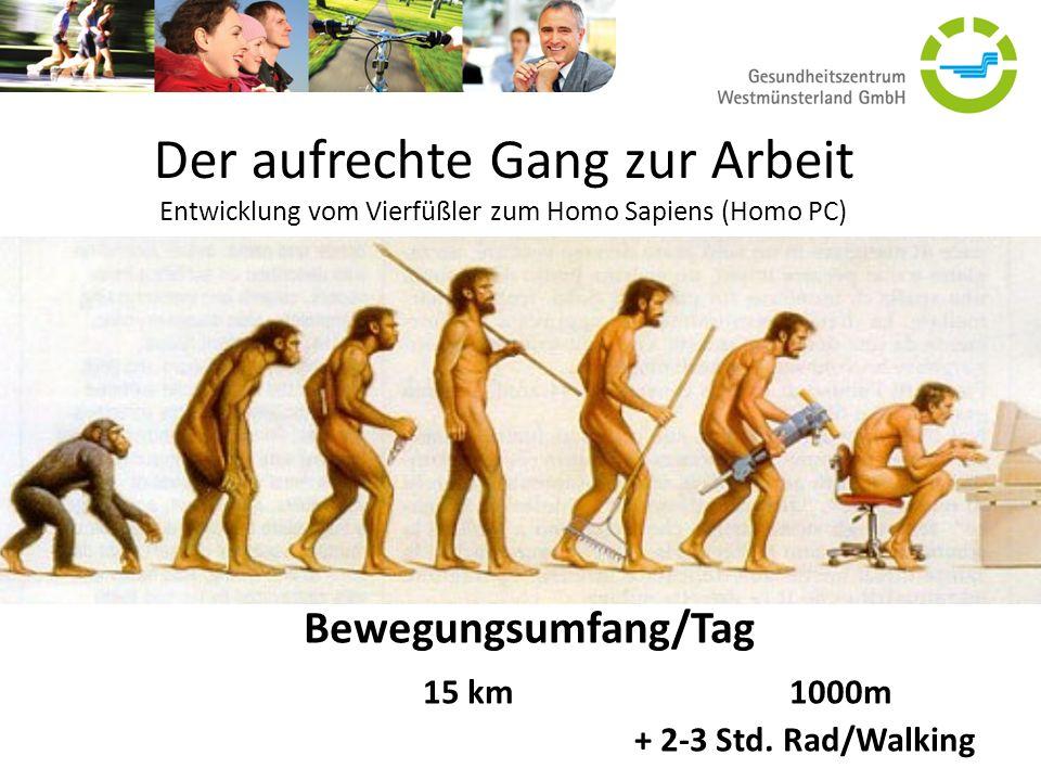 Der aufrechte Gang zur Arbeit Entwicklung vom Vierfüßler zum Homo Sapiens (Homo PC) Quelle: www.holzidoc.ch Bewegungsumfang/Tag 15 km1000m + 2-3 Std.