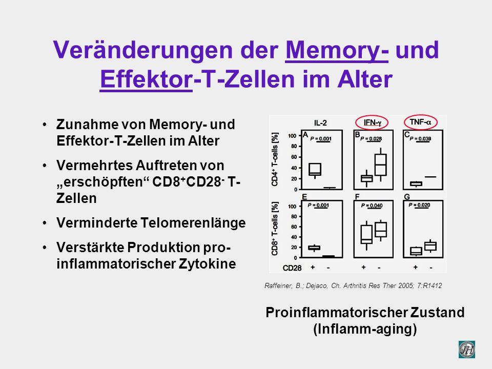 """JH Veränderungen der Memory- und Effektor-T-Zellen im Alter Zunahme von Memory- und Effektor-T-Zellen im Alter Vermehrtes Auftreten von """"erschöpften CD8 + CD28 - T- Zellen Verminderte Telomerenlänge Verstärkte Produktion pro- inflammatorischer Zytokine Raffeiner, B.; Dejaco, Ch."""