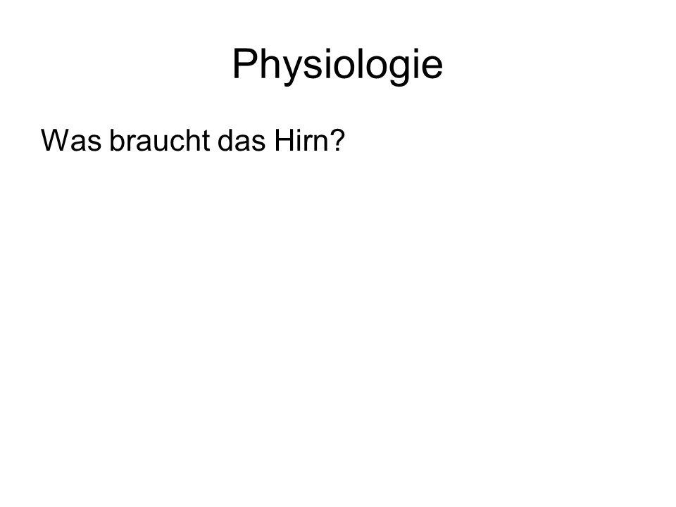 Physiologie Was braucht das Hirn?