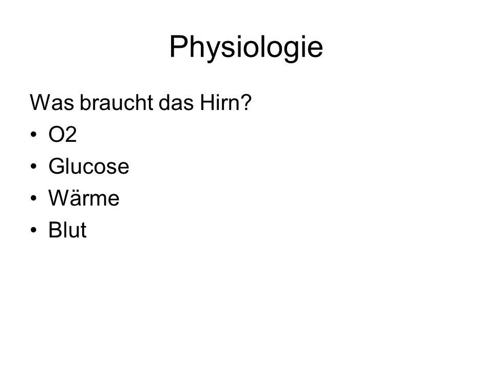 Physiologie Was braucht das Hirn? O2 Glucose Wärme Blut