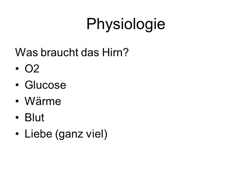 Physiologie Was braucht das Hirn? O2 Glucose Wärme Blut Liebe (ganz viel)