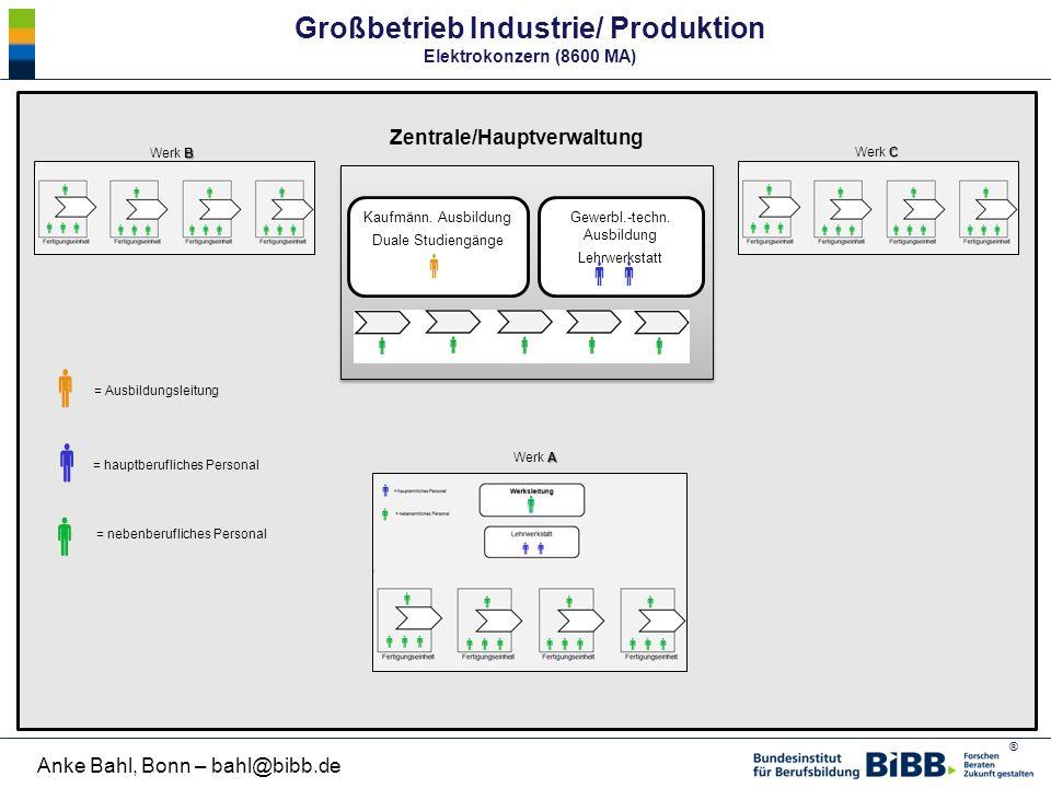 ® Anke Bahl, Bonn – bahl@bibb.de Großbetrieb Industrie/ Produktion Elektrokonzern (8600 MA) Kaufmänn. Ausbildung Duale Studiengänge  Gewerbl.-techn.