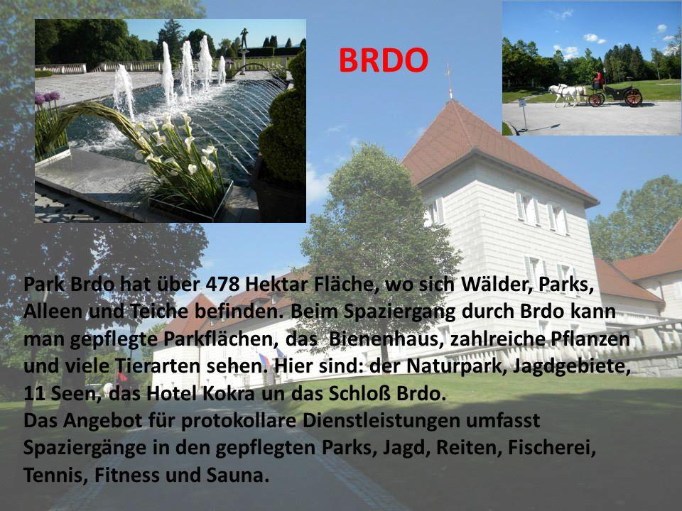 BRDO Park Brdo hat über 478 Hektar Fläche, wo sich Wälder, Parks, Alleen und Teiche befinden. Beim Spaziergang durch Brdo kann man gepflegte Parkfläch