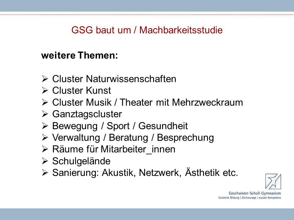 GSG baut um / Machbarkeitsstudie weitere Themen:  Cluster Naturwissenschaften  Cluster Kunst  Cluster Musik / Theater mit Mehrzweckraum  Ganztagsc