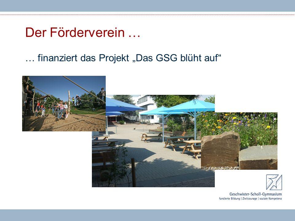 """Der Förderverein … … finanziert das Projekt """"Das GSG blüht auf"""""""