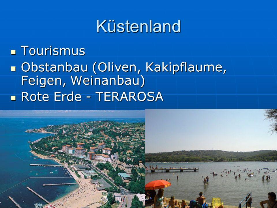 Küstenland Tourismus Tourismus Obstanbau (Oliven, Kakipflaume, Feigen, Weinanbau) Obstanbau (Oliven, Kakipflaume, Feigen, Weinanbau) Rote Erde - TERAR