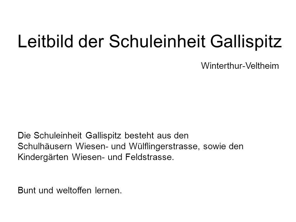 Die Schuleinheit Gallispitz besteht aus den Schulhäusern Wiesen- und Wülflingerstrasse, sowie den Kindergärten Wiesen- und Feldstrasse.