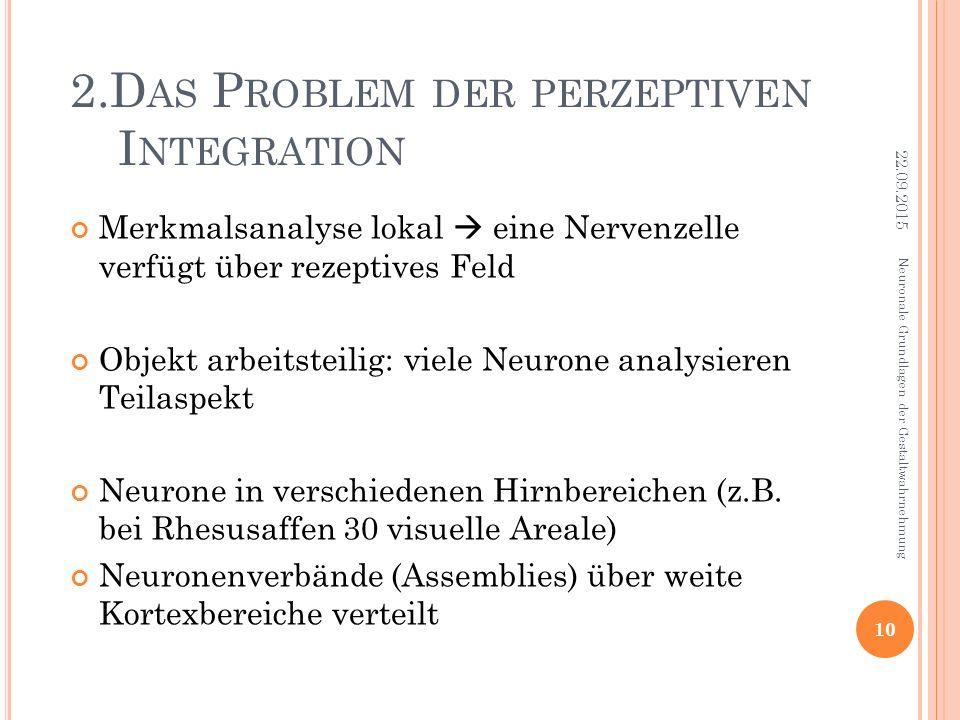 2.D AS P ROBLEM DER PERZEPTIVEN I NTEGRATION Merkmalsanalyse lokal  eine Nervenzelle verfügt über rezeptives Feld Objekt arbeitsteilig: viele Neurone