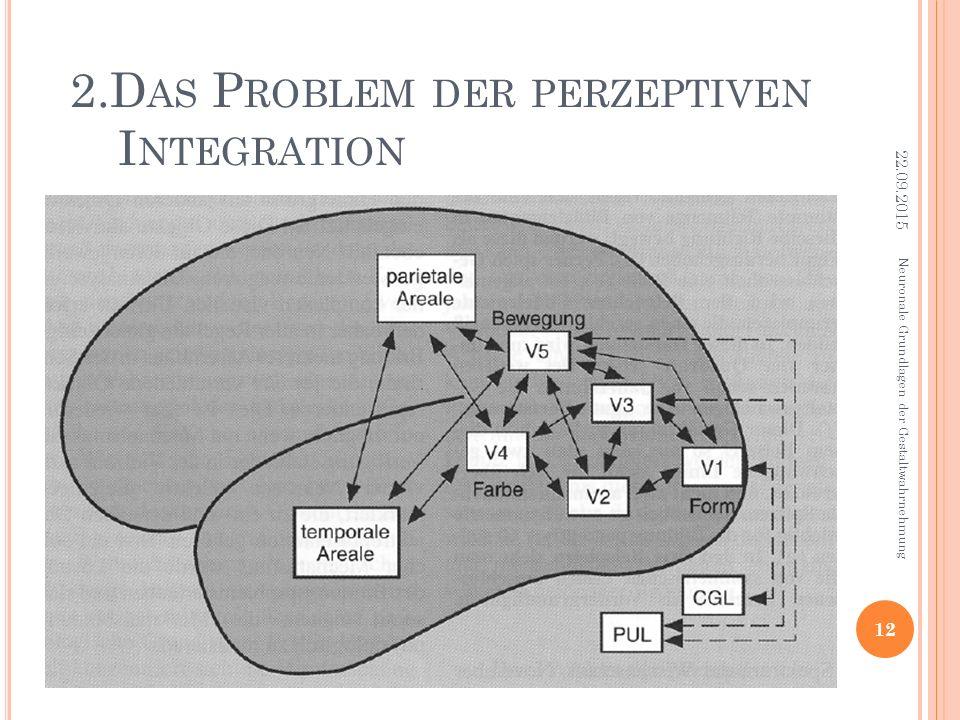 2.D AS P ROBLEM DER PERZEPTIVEN I NTEGRATION Neuronale Grundlagen der Gestaltwahrnehmung 22.09.2015 12