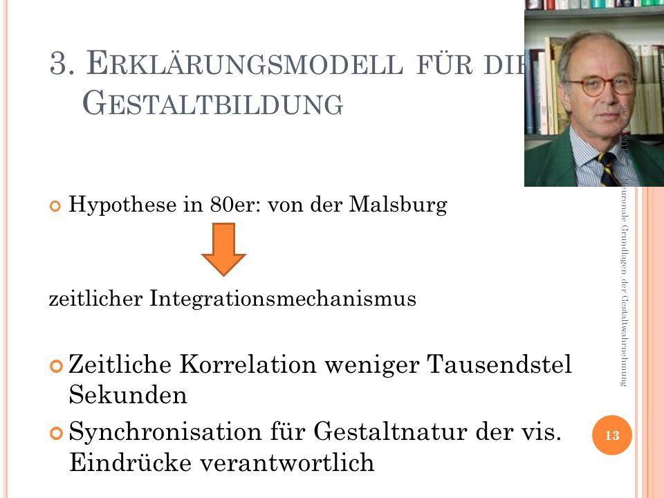 3. E RKLÄRUNGSMODELL FÜR DIE G ESTALTBILDUNG Hypothese in 80er: von der Malsburg zeitlicher Integrationsmechanismus Zeitliche Korrelation weniger Taus