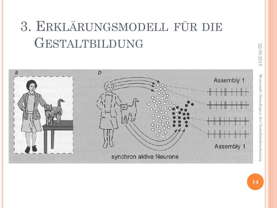 3. E RKLÄRUNGSMODELL FÜR DIE G ESTALTBILDUNG Neuronale Grundlagen der Gestaltwahrnehmung 22.09.2015 14