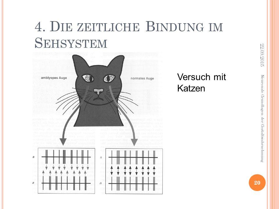 4. D IE ZEITLICHE B INDUNG IM S EHSYSTEM Neuronale Grundlagen der Gestaltwahrnehmung 22.09.2015 20 Versuch mit Katzen