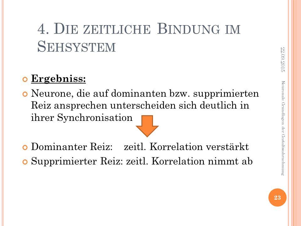 4. D IE ZEITLICHE B INDUNG IM S EHSYSTEM Ergebniss: Neurone, die auf dominanten bzw. supprimierten Reiz ansprechen unterscheiden sich deutlich in ihre