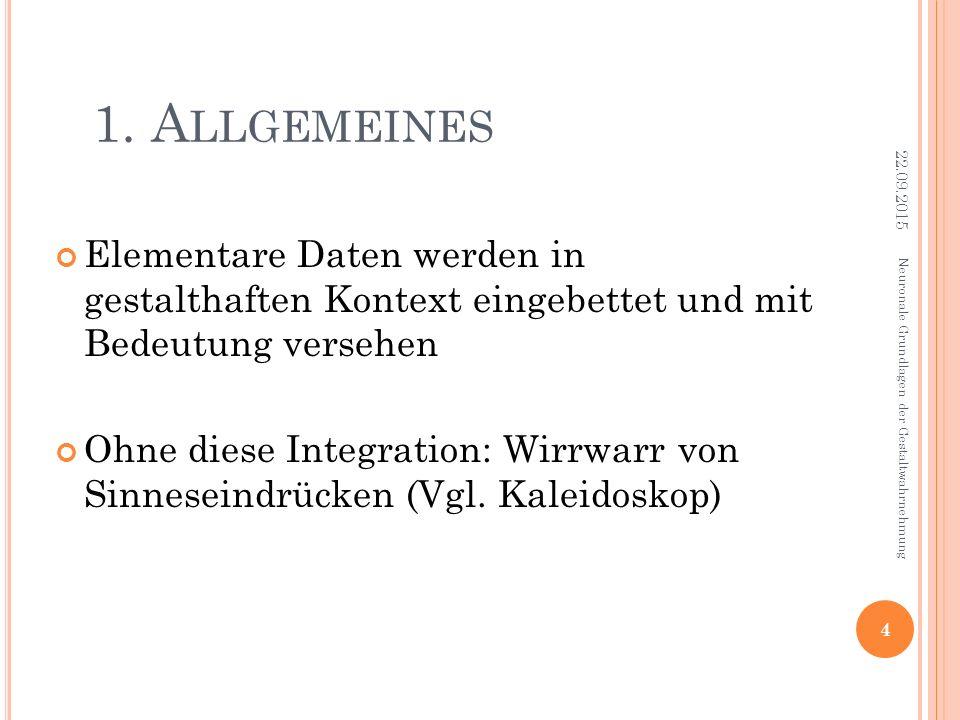 1. A LLGEMEINES Elementare Daten werden in gestalthaften Kontext eingebettet und mit Bedeutung versehen Ohne diese Integration: Wirrwarr von Sinnesein