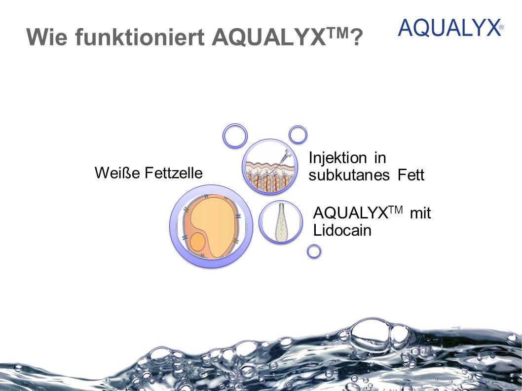Wie funktioniert AQUALYX TM ? Weiße Fettzelle AQUALYX TM mit Lidocain Injektion in subkutanes Fett