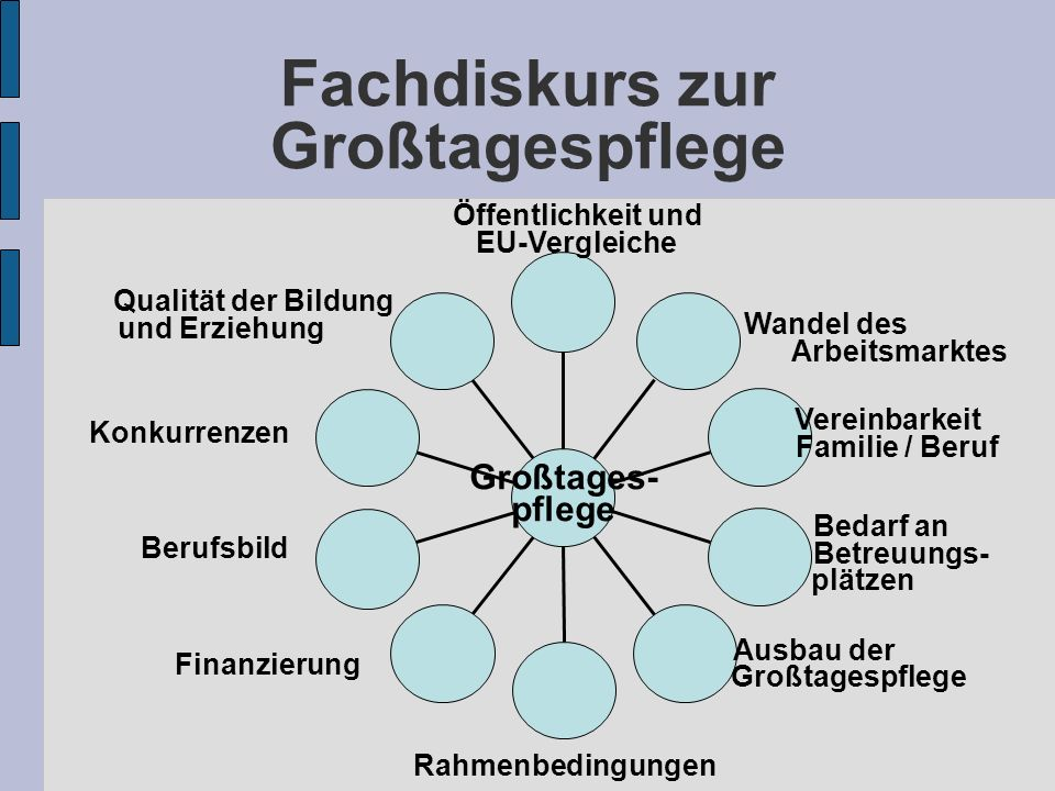 Fachdiskurs zur Großtagespflege Ausbau der Großtagespflege Bedarf an Betreuungs- plätzen Vereinbarkeit Familie / Beruf Wandel des Arbeitsmarktes Großtages- pflege Qualität der Bildung und Erziehung Rahmenbedingungen Finanzierung Öffentlichkeit und EU-Vergleiche Konkurrenzen Berufsbild