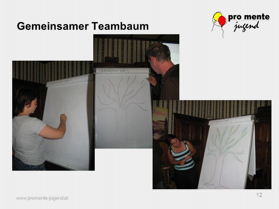 www.promente-jugend.at 12 Gemeinsamer Teambaum