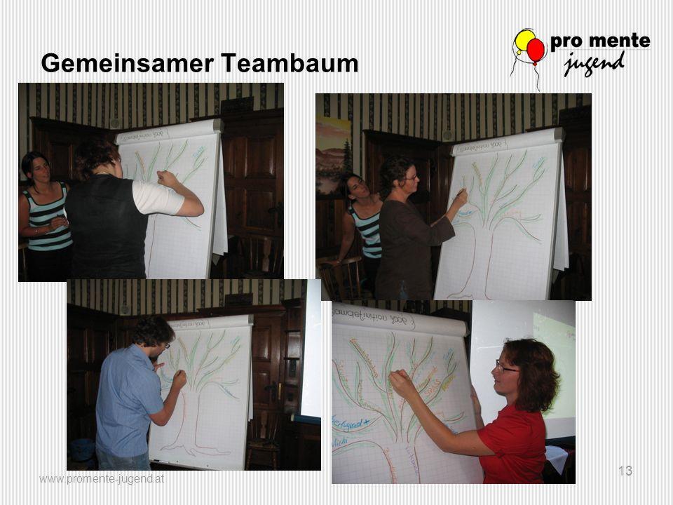 www.promente-jugend.at 13 Gemeinsamer Teambaum