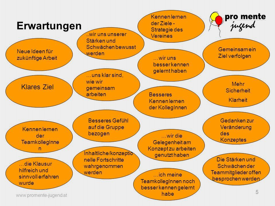 www.promente-jugend.at 5 Erwartungen Neue Ideen für zukünftige Arbeit Klares Ziel Kennen lernen der Ziele - Strategie des Vereines..wir uns unserer St