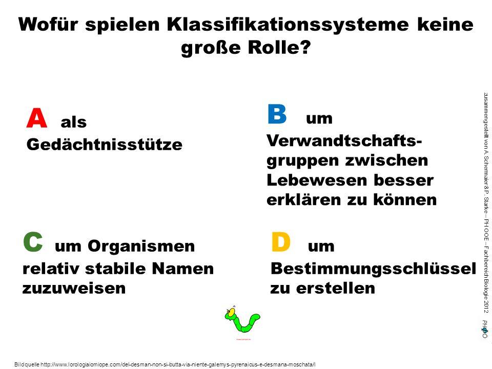 zusammengestellt von A. Schermaier & P. Starke – PH OOE – Fachbereich Biologie 2012 Wofür spielen Klassifikationssysteme keine große Rolle? A als Gedä