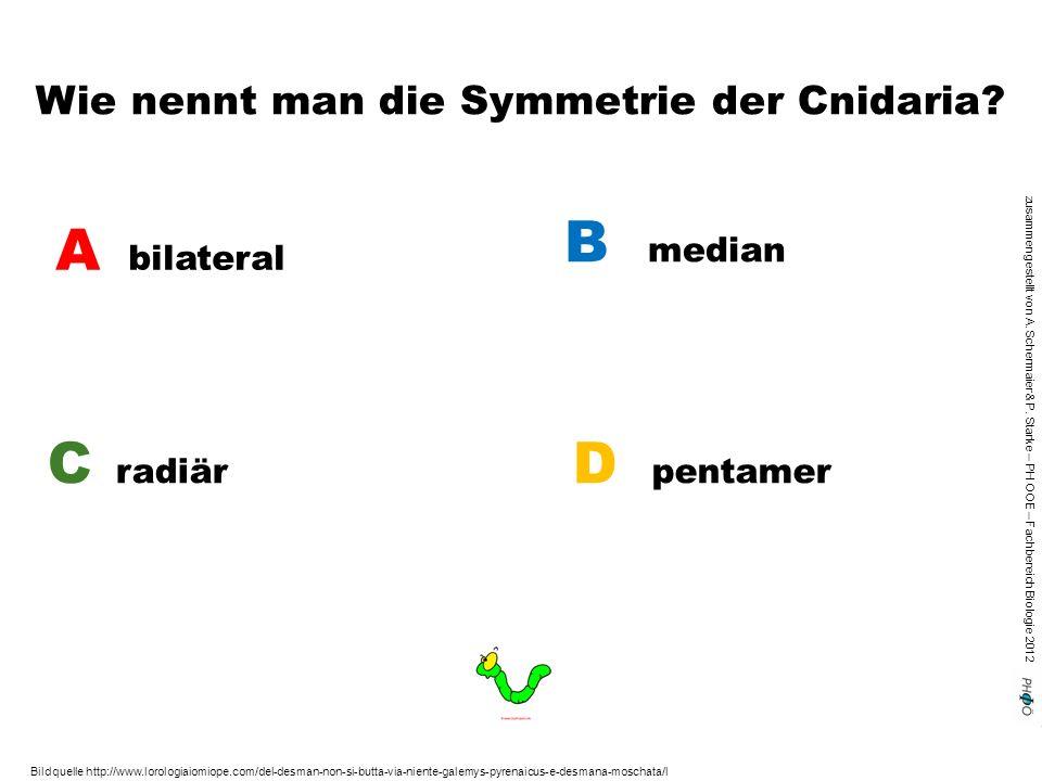 zusammengestellt von A. Schermaier & P. Starke – PH OOE – Fachbereich Biologie 2012 Wie nennt man die Symmetrie der Cnidaria? A bilateral B median C r