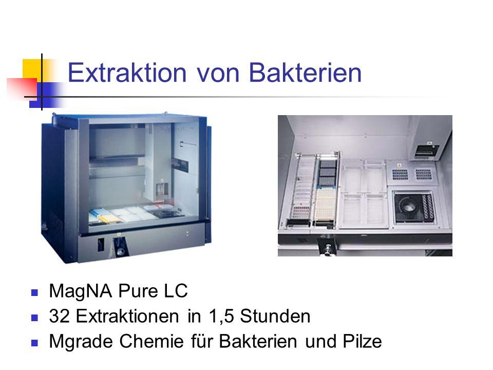 Extraktion von Bakterien MagNA Pure LC 32 Extraktionen in 1,5 Stunden Mgrade Chemie für Bakterien und Pilze
