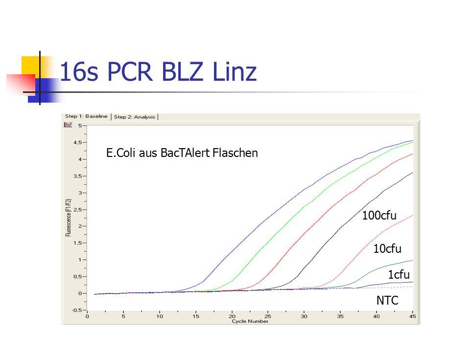 16s PCR BLZ Linz E.Coli aus BacTAlert Flaschen 10cfu 1cfu 100cfu NTC