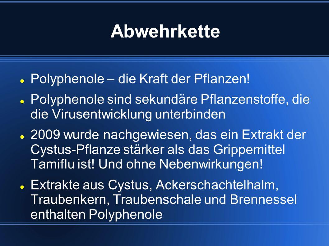 Abwehrkette Polyphenole – die Kraft der Pflanzen! Polyphenole sind sekundäre Pflanzenstoffe, die die Virusentwicklung unterbinden 2009 wurde nachgewie