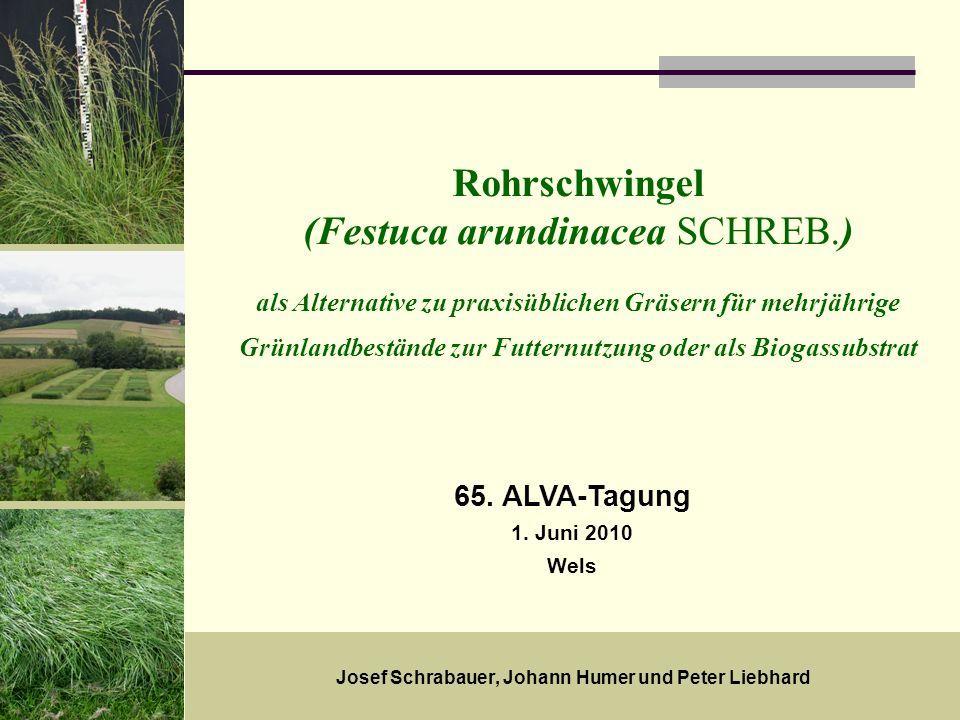 18. Mai 20091 Rohrschwingel (Festuca arundinacea SCHREB.) als Alternative zu praxisüblichen Gräsern für mehrjährige Grünlandbestände zur Futternutzung