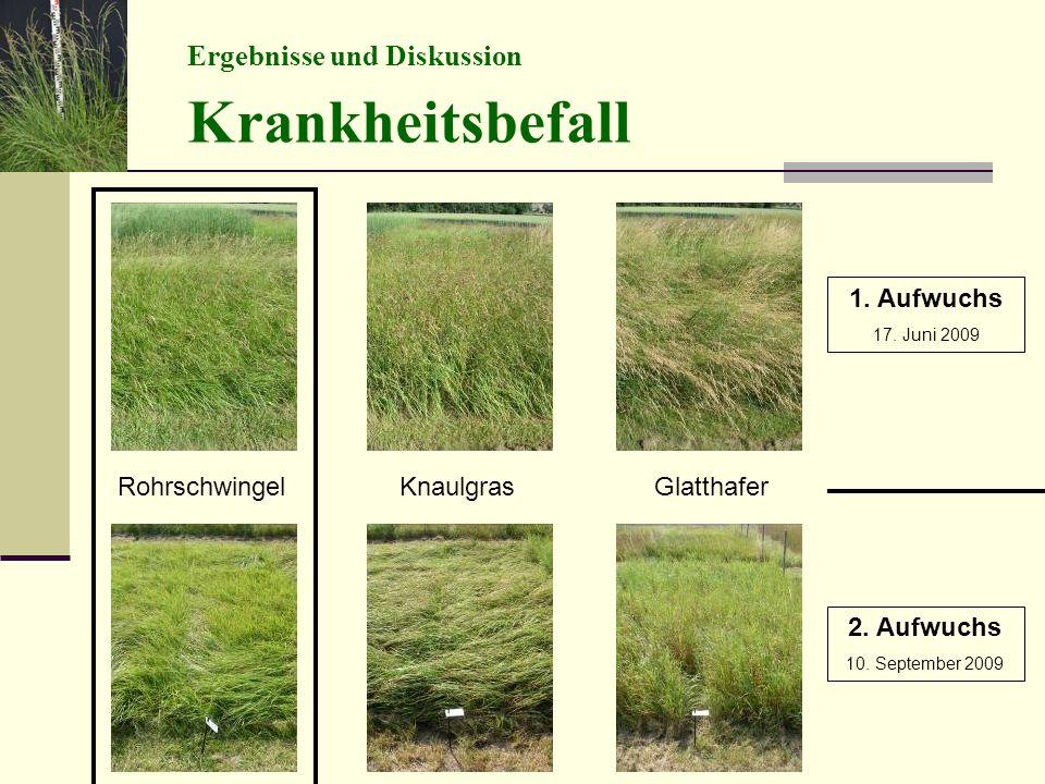 Ergebnisse und Diskussion Krankheitsbefall RohrschwingelKnaulgrasGlatthafer 1.