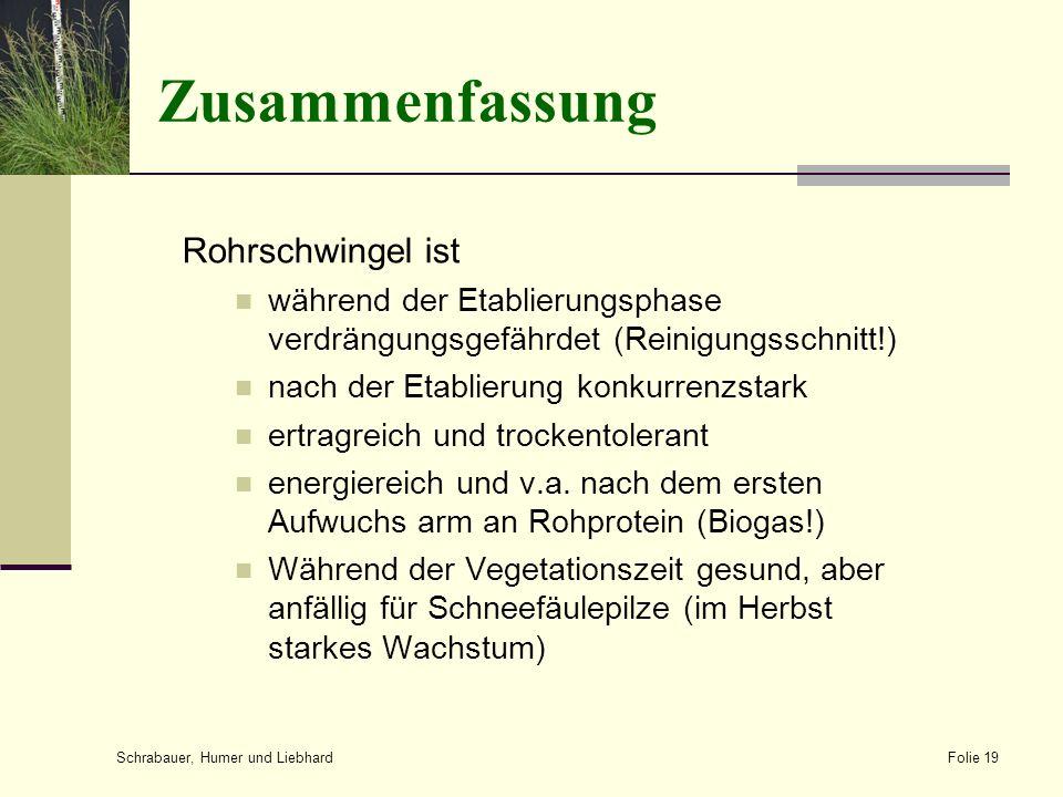 Zusammenfassung Rohrschwingel ist während der Etablierungsphase verdrängungsgefährdet (Reinigungsschnitt!) nach der Etablierung konkurrenzstark ertrag
