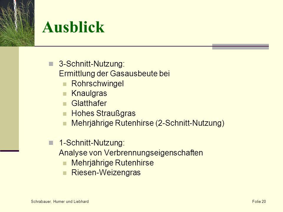 Ausblick 3-Schnitt-Nutzung: Ermittlung der Gasausbeute bei Rohrschwingel Knaulgras Glatthafer Hohes Straußgras Mehrjährige Rutenhirse (2-Schnitt-Nutzu