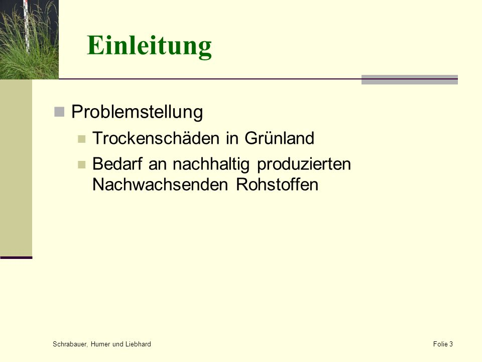 Einleitung Problemstellung Trockenschäden in Grünland Bedarf an nachhaltig produzierten Nachwachsenden Rohstoffen Schrabauer, Humer und Liebhard Folie