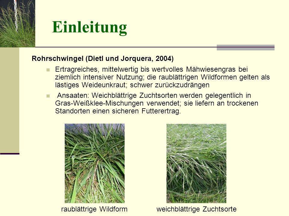 Einleitung Rohrschwingel (Dietl und Jorquera, 2004) Ertragreiches, mittelwertig bis wertvolles Mähwiesengras bei ziemlich intensiver Nutzung; die raub