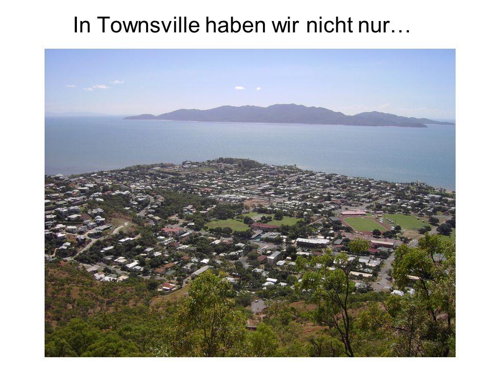 In Townsville haben wir nicht nur…