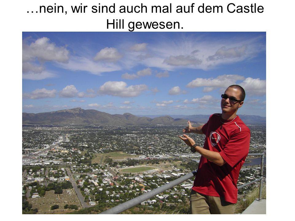 …nein, wir sind auch mal auf dem Castle Hill gewesen.