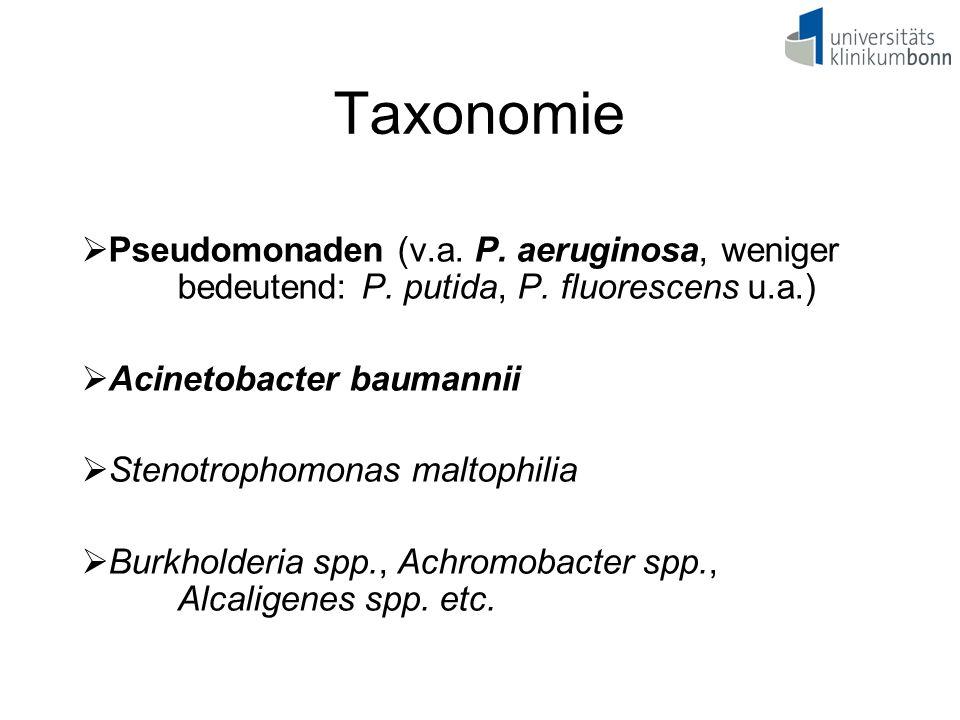 Taxonomie  Pseudomonaden (v.a. P. aeruginosa, weniger bedeutend: P. putida, P. fluorescens u.a.)  Acinetobacter baumannii  Stenotrophomonas maltoph