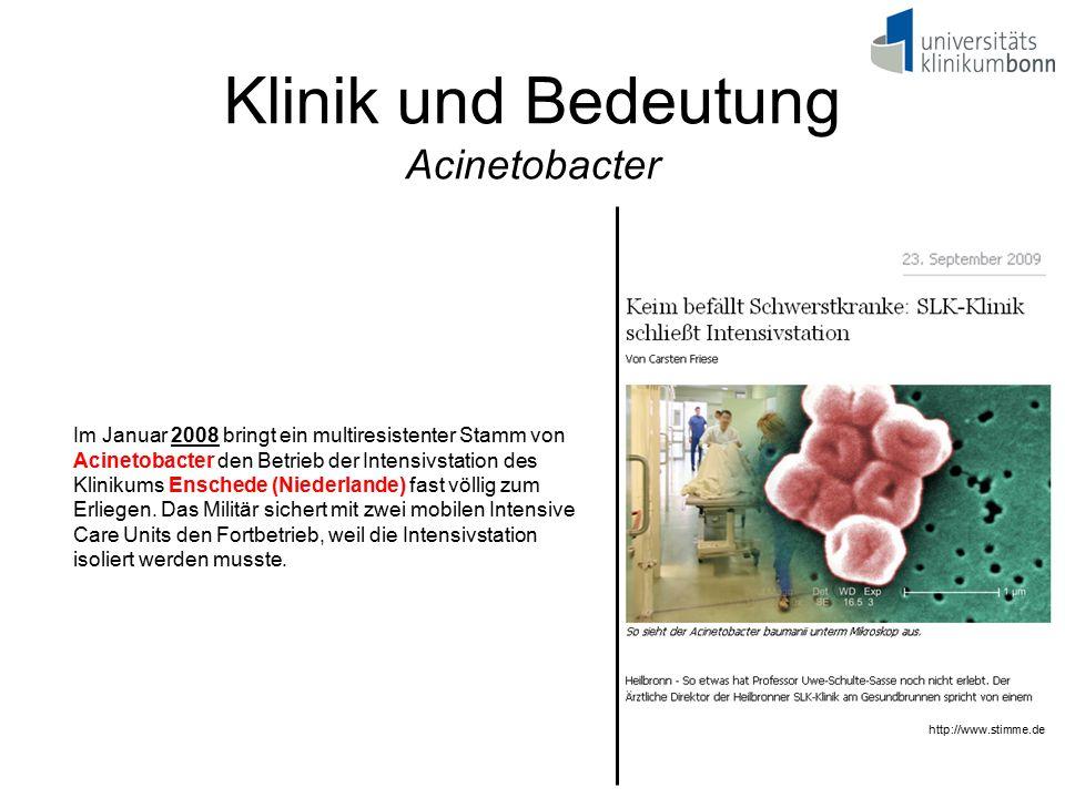 Klinik und Bedeutung Acinetobacter Im Januar 2008 bringt ein multiresistenter Stamm von Acinetobacter den Betrieb der Intensivstation des Klinikums En