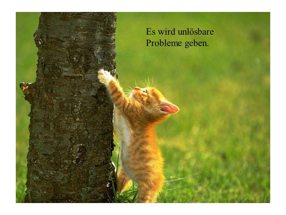 Es wird unlösbare Probleme geben.