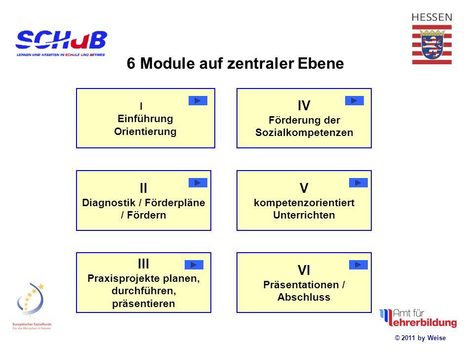 © 2011 by Weise Kollegiale Unterstützungs- strategien Übergang Schule Beruf regionale Module