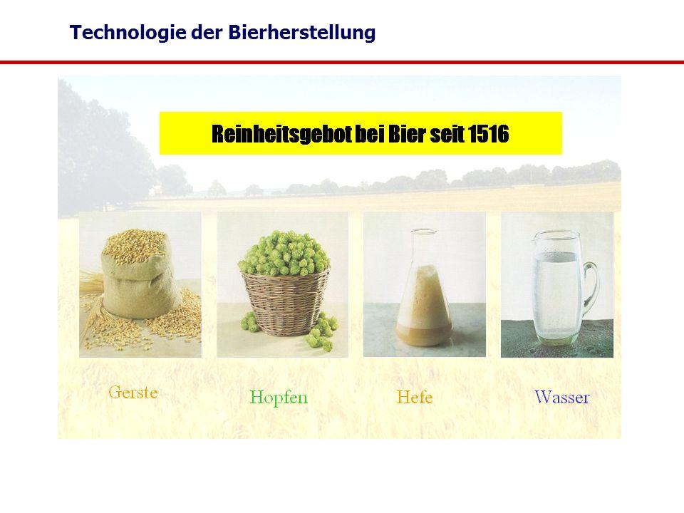 Technologie der Bierherstellung