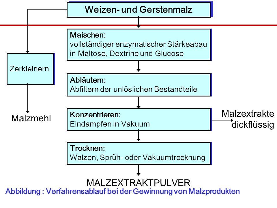Abbildung : Verfahrensablauf bei der Gewinnung von Malzprodukten Weizen- und Gerstenmalz Maischen: vollständiger enzymatischer Stärkeabau in Maltose, Dextrine und Glucose Abläutern: Abfiltern der unlöslichen Bestandteile Konzentrieren: Eindampfen in Vakuum Trocknen: Walzen, Sprüh- oder Vakuumtrocknung Zerkleinern Malzmehl Malzextrakte dickflüssig MALZEXTRAKTPULVER