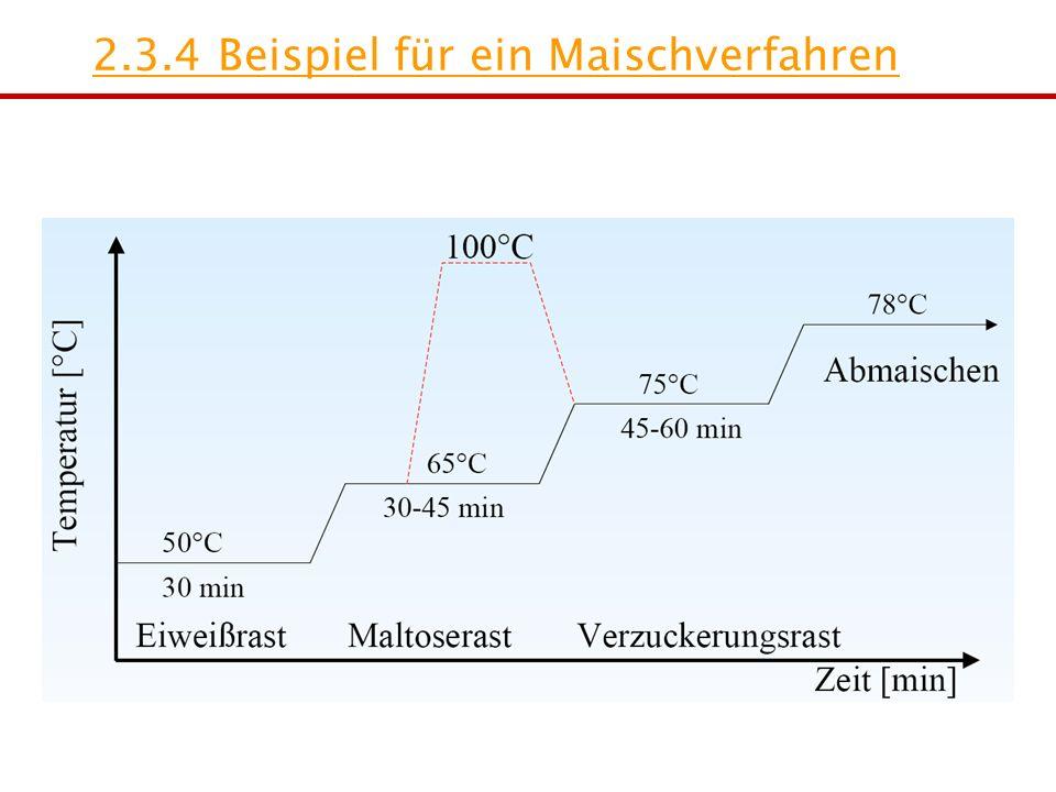 2.3.4 Beispiel für ein Maischverfahren