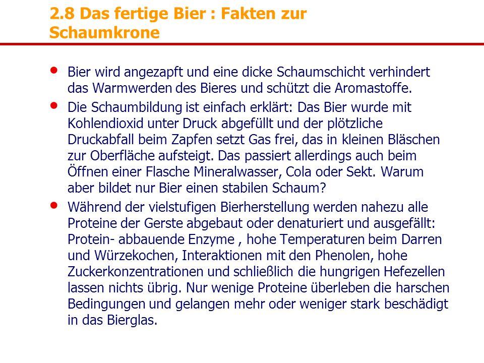 2.8 Das fertige Bier : Fakten zur Schaumkrone Bier wird angezapft und eine dicke Schaumschicht verhindert das Warmwerden des Bieres und schützt die Ar