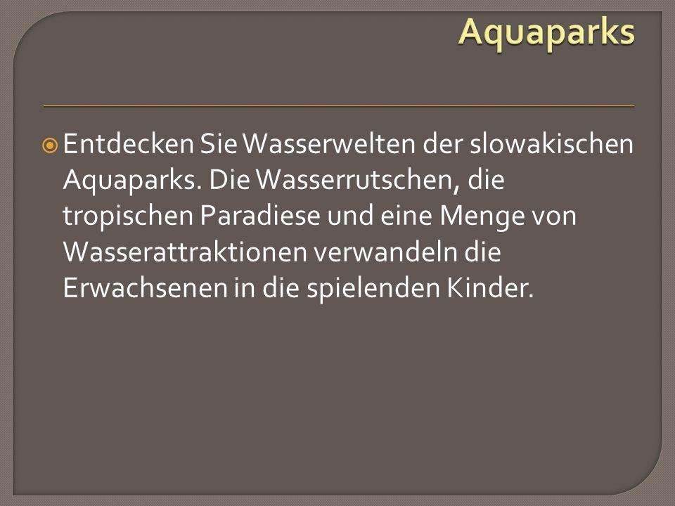  Entdecken Sie Wasserwelten der slowakischen Aquaparks.